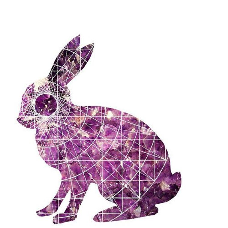 Adam Rabbit