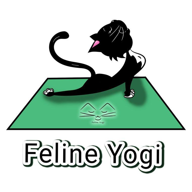 Feline Yogi