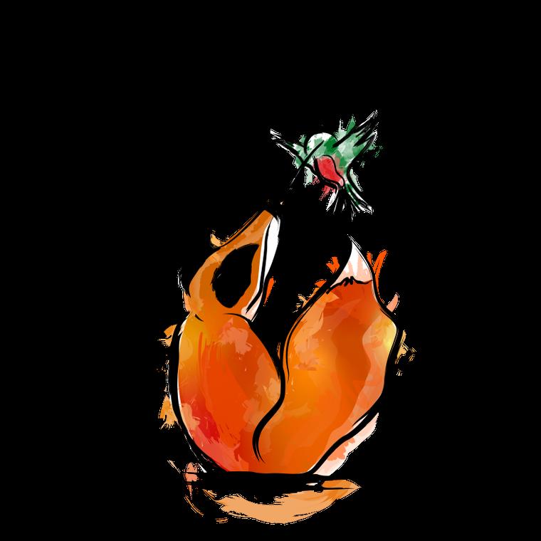 HummingFox
