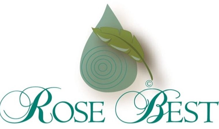 Rose Best