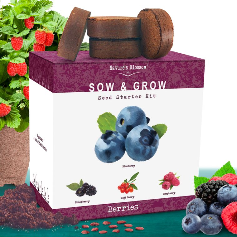 Nature's Blossom Fruit Growing Kit