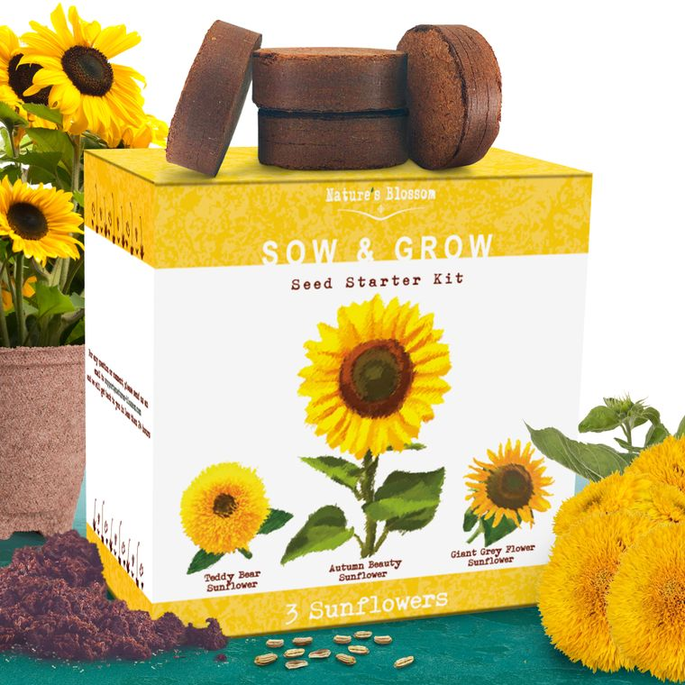 Nature's Blossom Sunflower Growing Kit