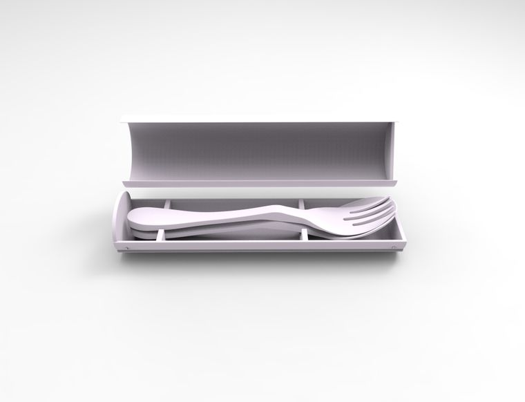 Eco Carry Case Stainless Salad Fork and Stainless Teaspoon Combo Pack