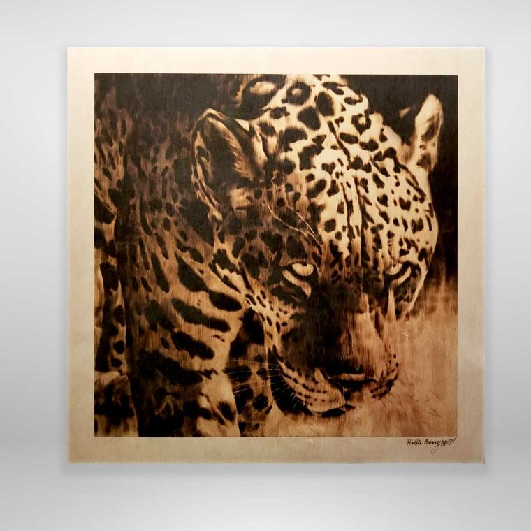 Hunter's Gaze (Jaguar, medium)