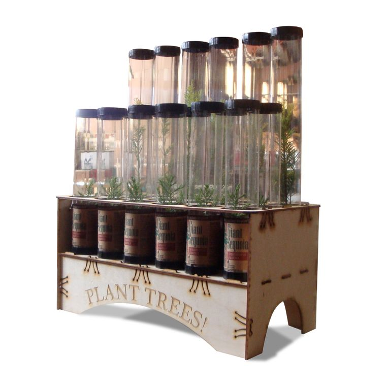 Countertop Tree Seedling Display (Trees Not Included)