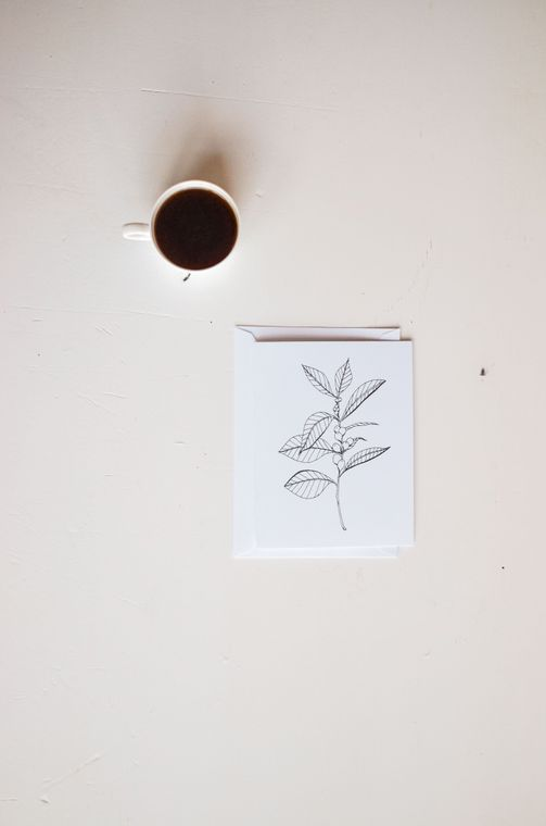 Coffee Plant Greeting Card