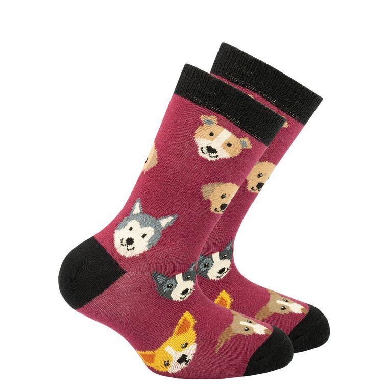 Kids Cute Dogs Socks