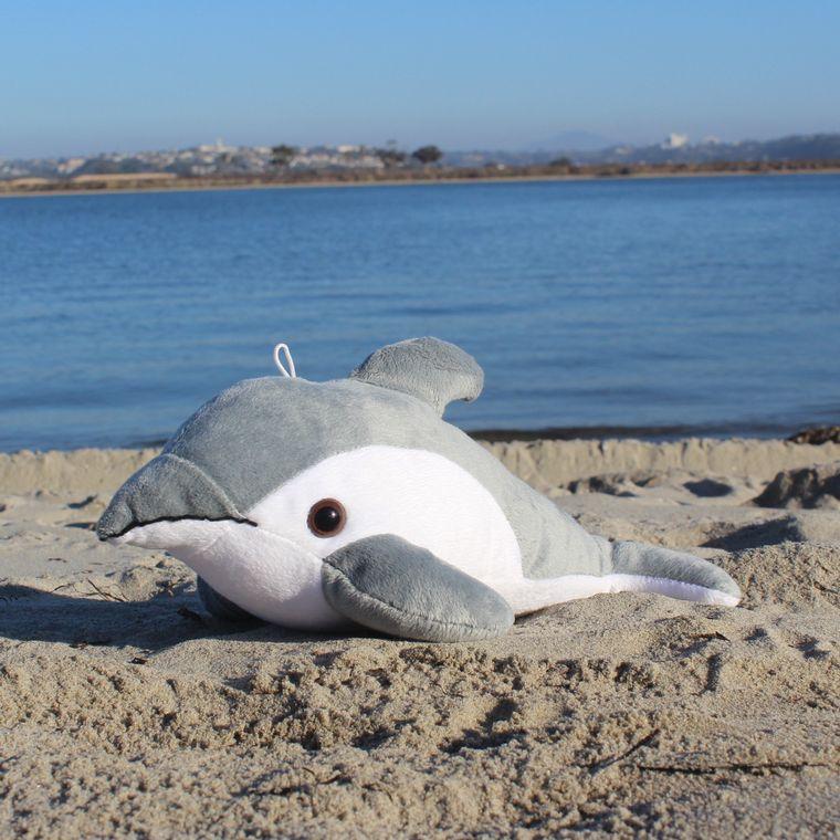 Finn the Dolphin
