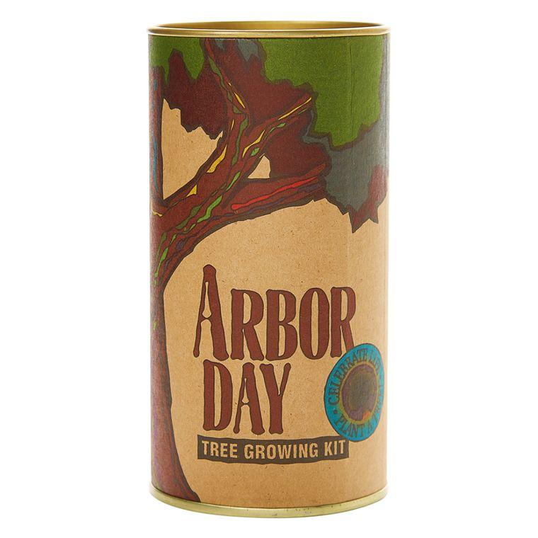 Arbor Day | Tulip Poplar | Seed Grow Kit | The Jonsteen Company