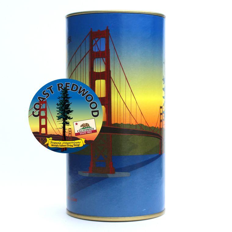 California Redwood | Coast Redwood | Seed Grow Kit | The Jonsteen Company