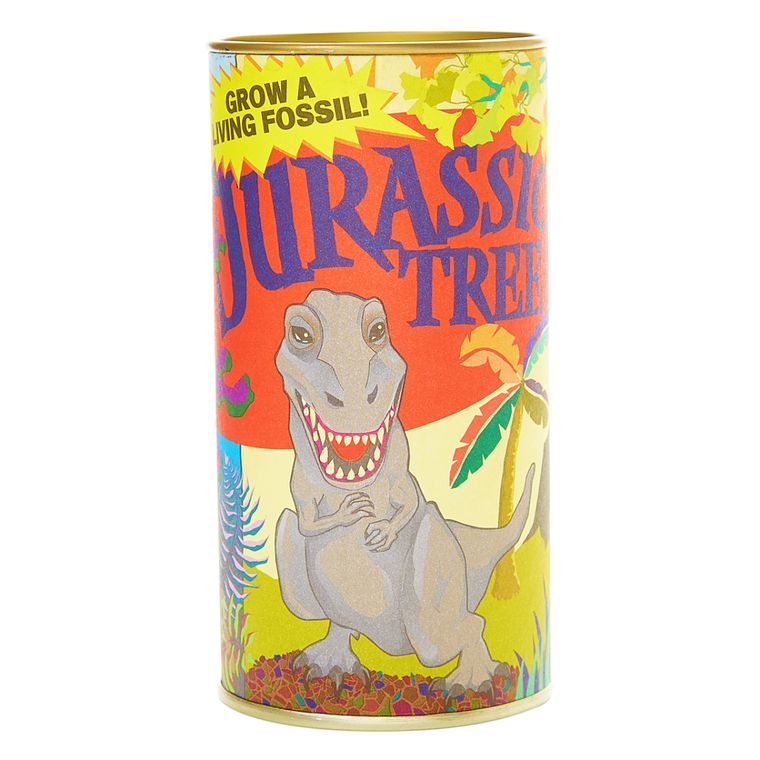 Jurassic Tree | Ginkgo Tree | Seed Grow Kit | The Jonsteen Company