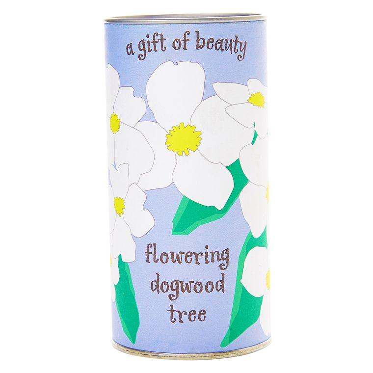 Pacific Dogwood | Seed Grow Kit | The Jonsteen Company