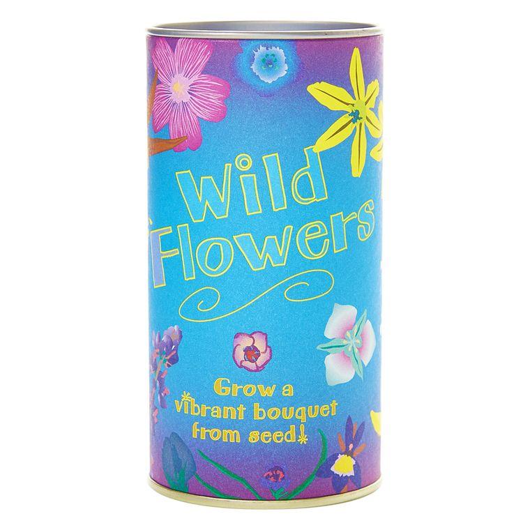 Wildflower | Seed Grow Kit | The Jonsteen Company