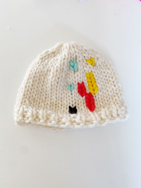 Chunky Knit Colorful Beanie
