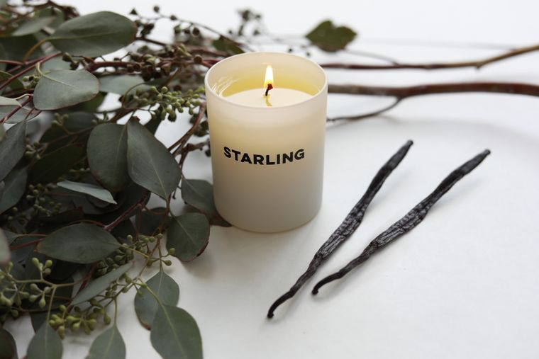 Vanilla + Hemlock Candle