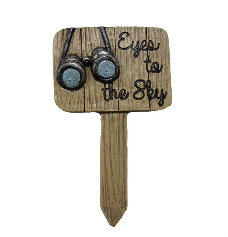 "5"" ""Eyes to the Sky"" Garden Sign, 1pc"