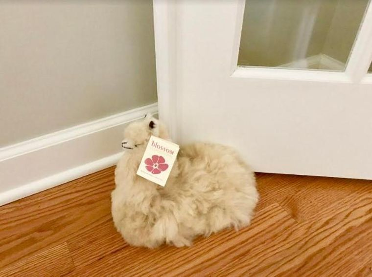 Door Stop Sitting Alpaca Toy