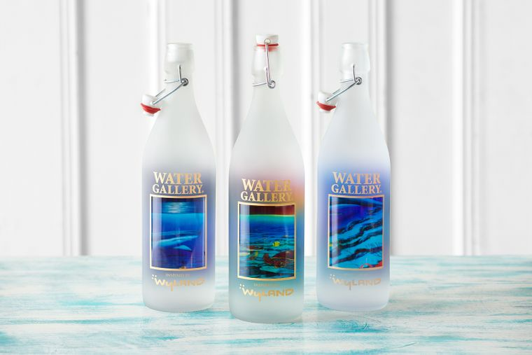 Wyland Glass Water Bottles