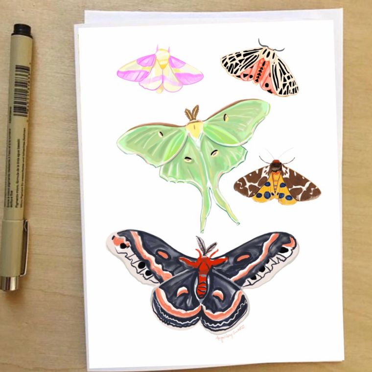 Moths, any occasion, illustrated Greeting Card