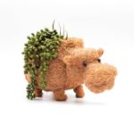 Animal Planter - Hippo