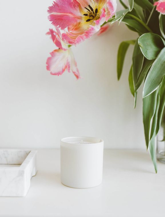 Dignity Series Soy Candle - Aspen / Fog