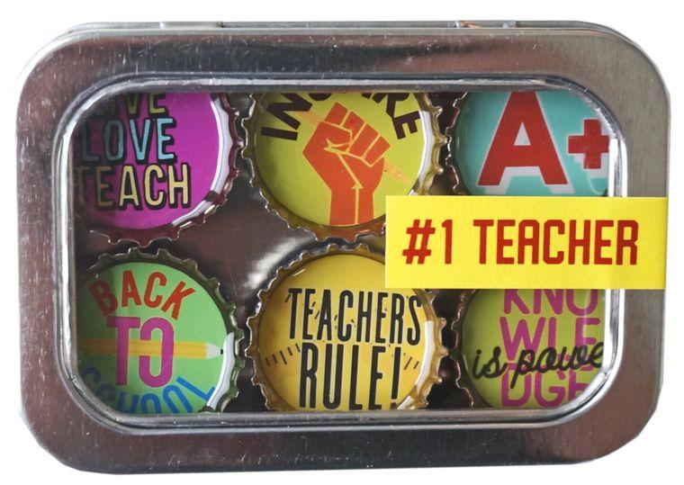 Teacher Magnet - Six Pack