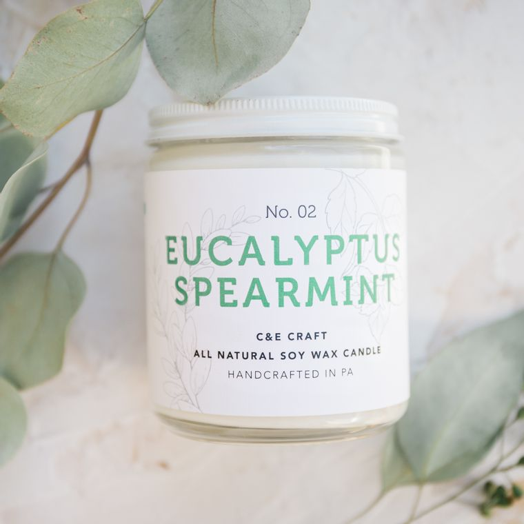 Eucalyptus Spearmint Scented Sot Wax Candle