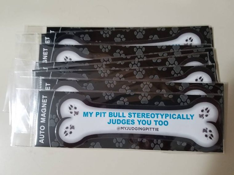 Pit Bull Awareness Car Magnet