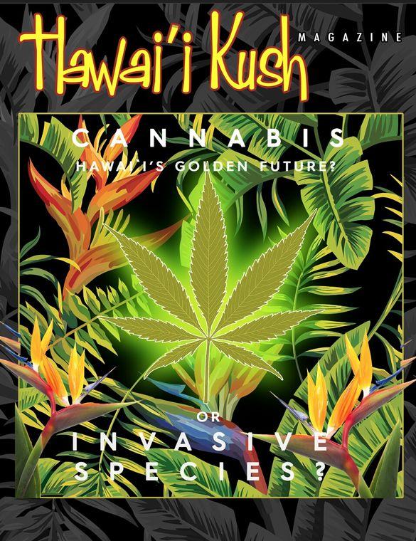 Hawaii Kush