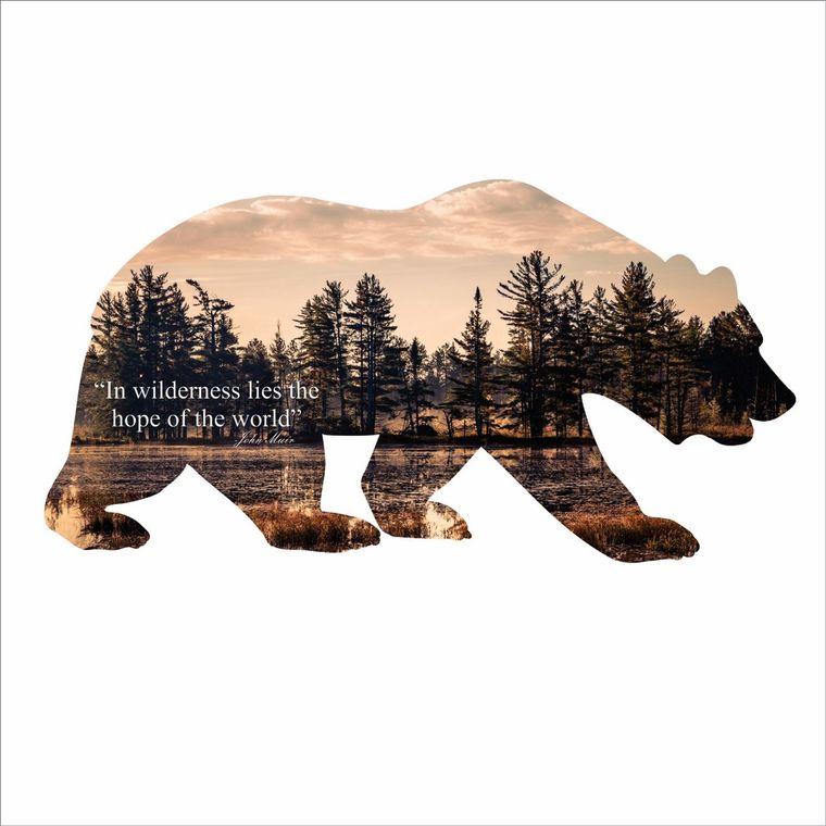 Steel Imagery Bear Silhouette