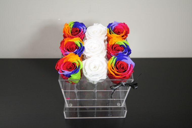 Rainbow White eternity assortment