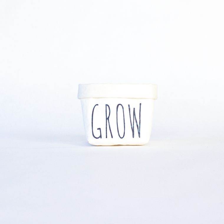 Grow Mini Tiered Tray Paper Leather Pot