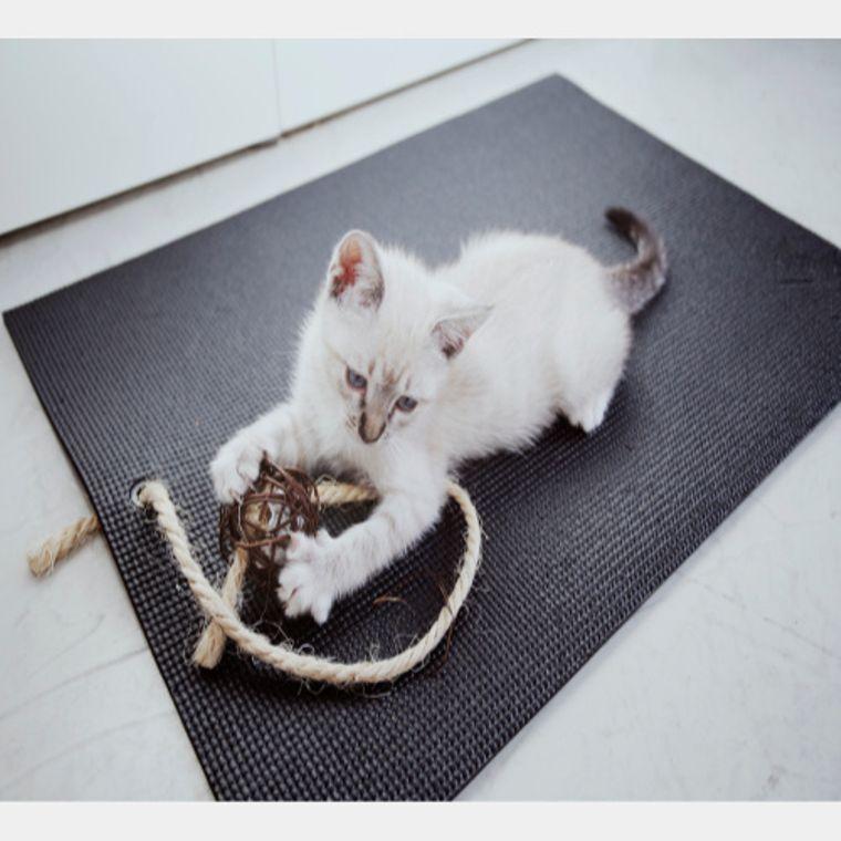 Black Yoga Cat Mat
