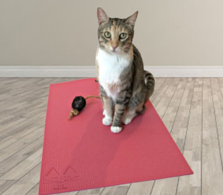 Pink Yoga Cat Mat