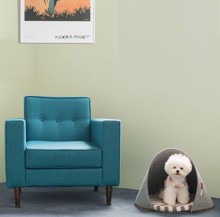 Pet Dome Milo