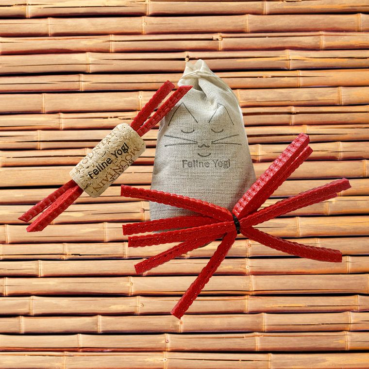 Red Yoga Cat Toy Gift Set