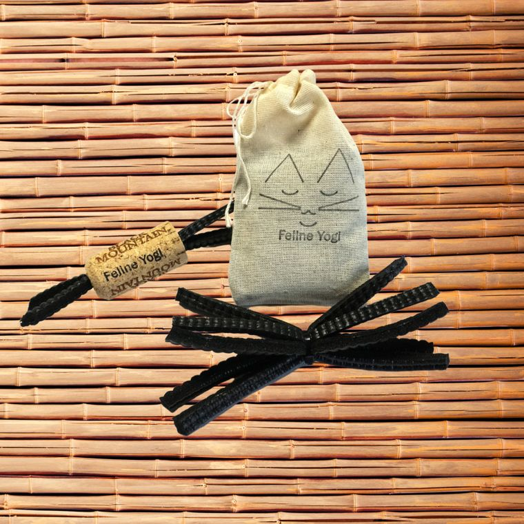 Black Yoga Cat Toy Gift Set